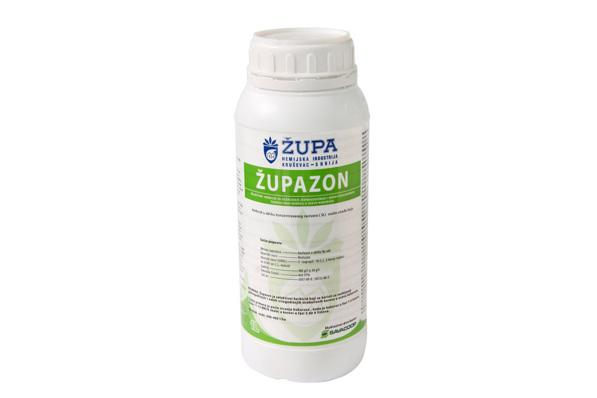 zupazon1